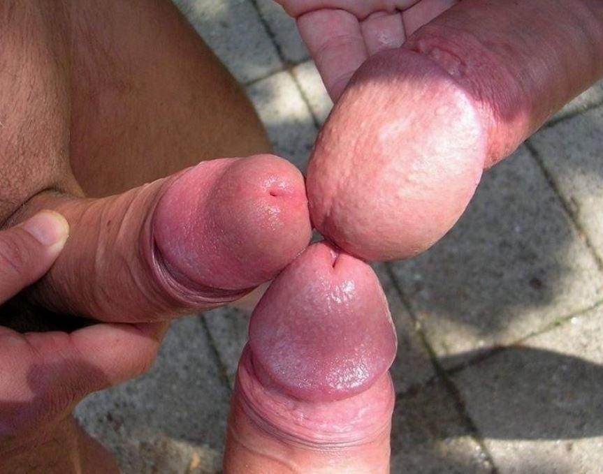 Огромная Головка Члена Гей Порно