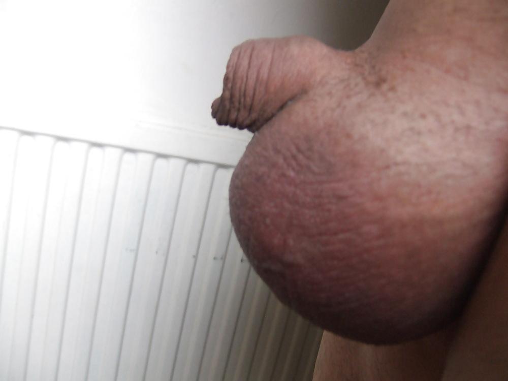 Pornstar sharon kane