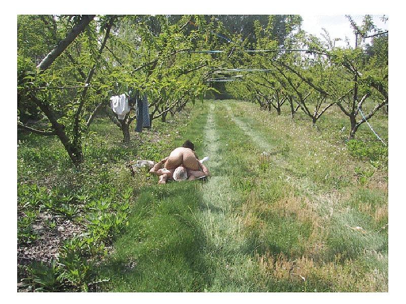 Подглядывания в траве эротика фото, грузчик ебет заведующую магазином смотреть онлайн