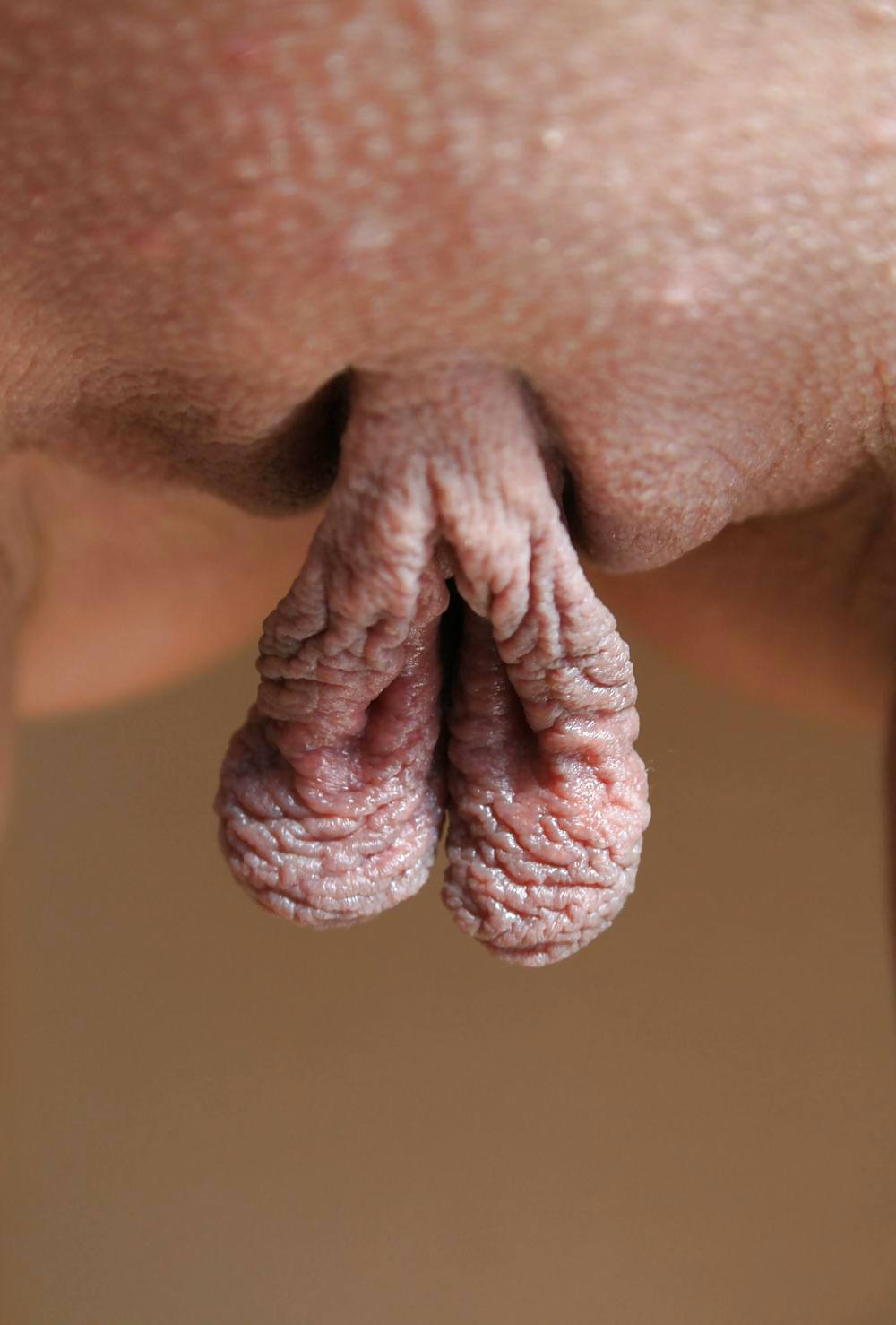 Nude hanging clits — img 5