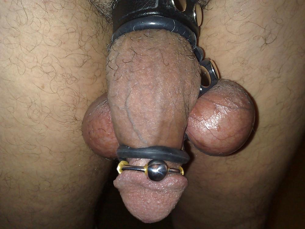 Penis Tortur