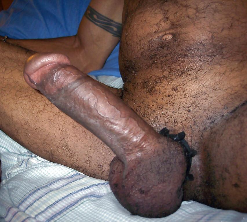 Popular big cock sex pics
