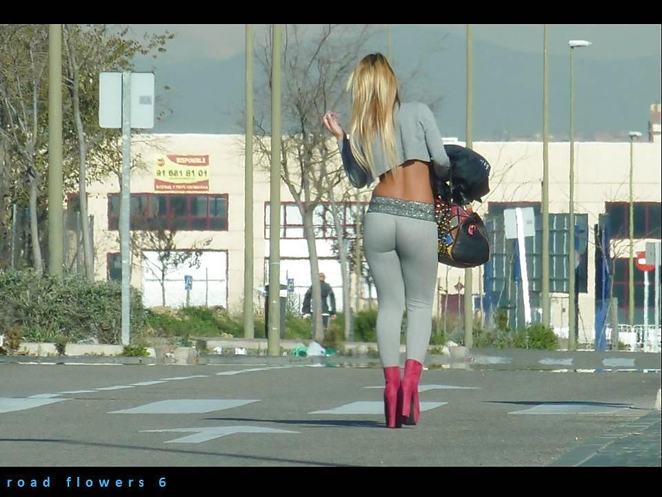 Девушки где недорого на дорогах шлюшки