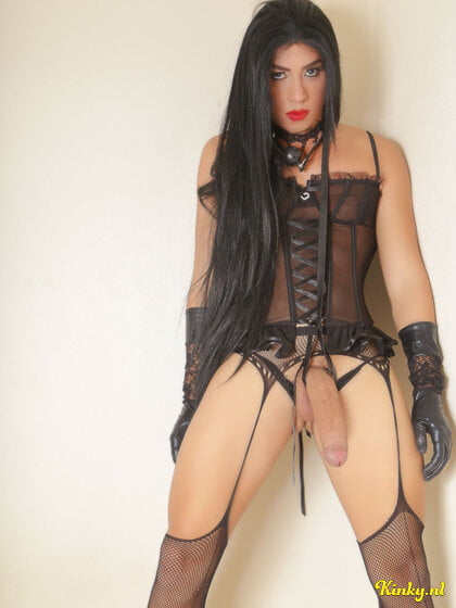 Connecticut shemale escorts ts escorts in connecticut, us