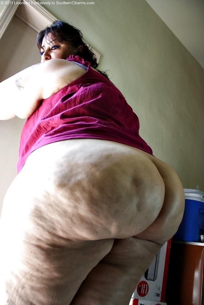 Big butts n tits