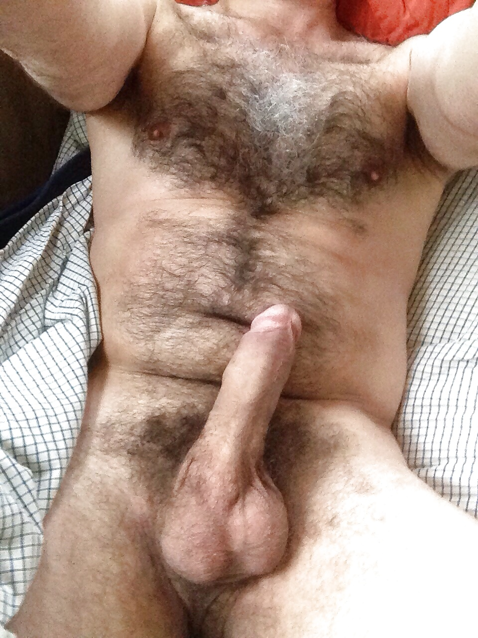 Hairy mens cocks