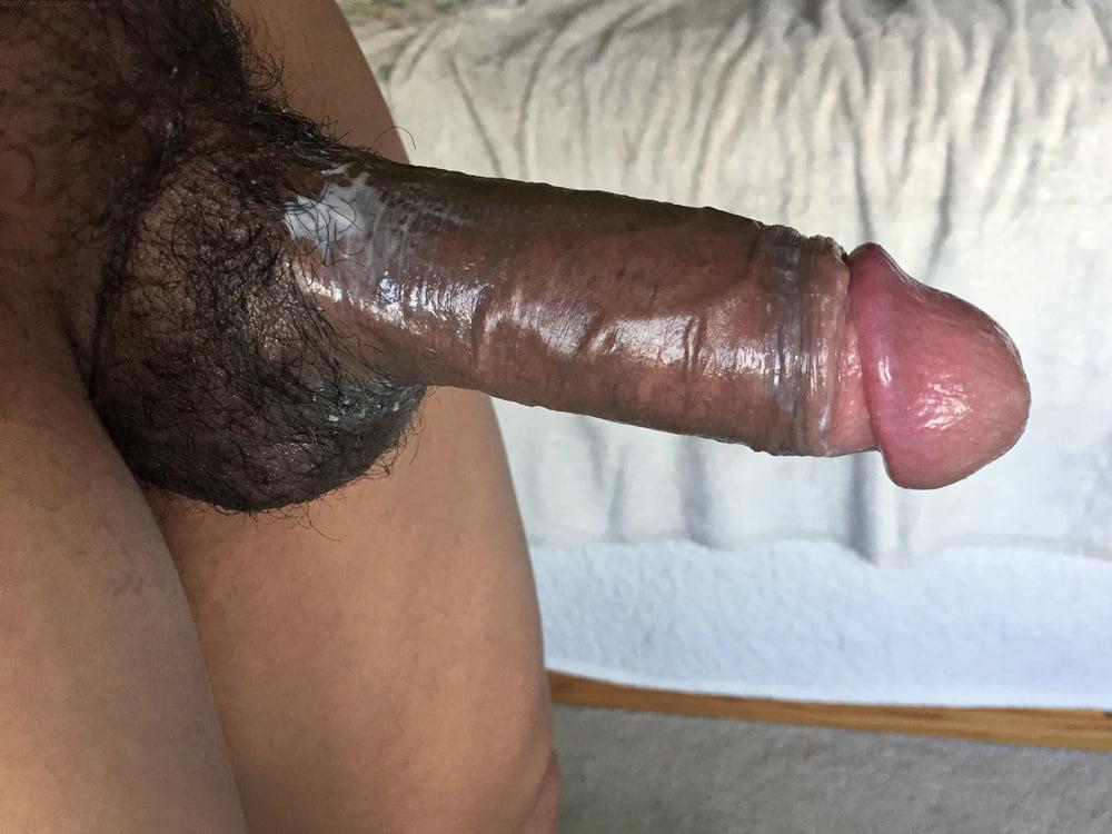 Big Brown Cock, Photo Album By Strikersegvz