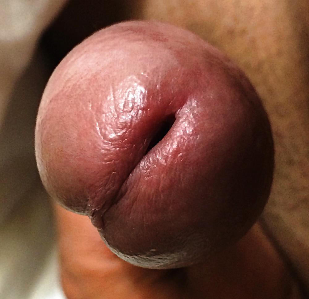 Секс головка члена крупным планом фото натуральные сиськи