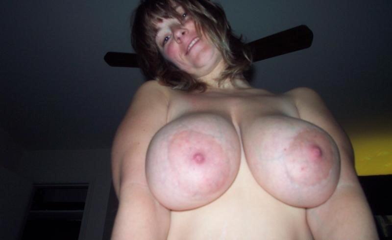 Great Tits - 38 Pics