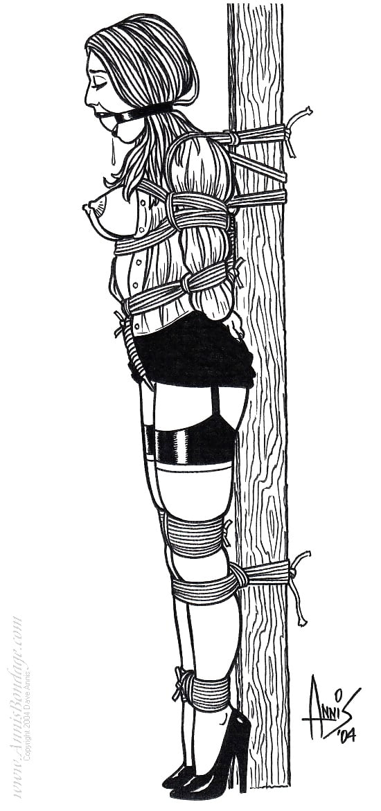 Drawing bondage suspension