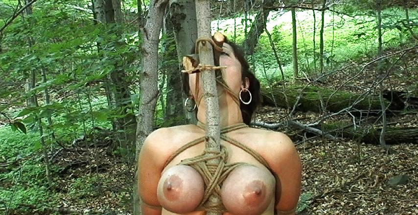 Порно садо мазо в лесу онлайн