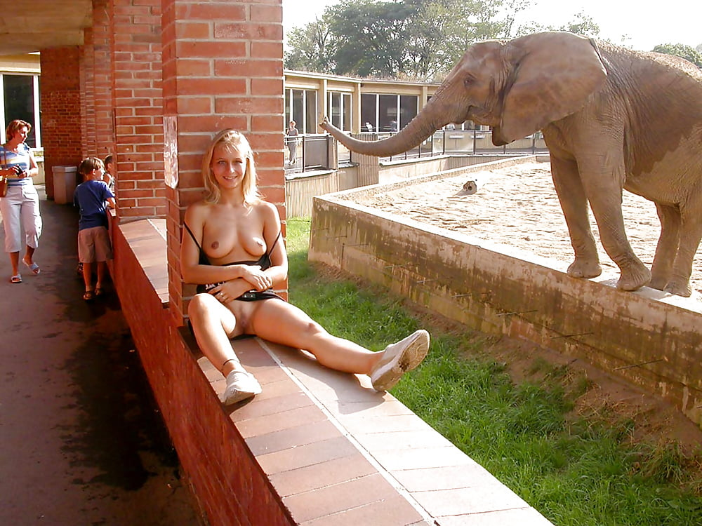 madrigal-elephant-humen-sex-pics