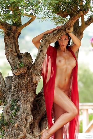 Playboy alissa harouat Alissa Arden