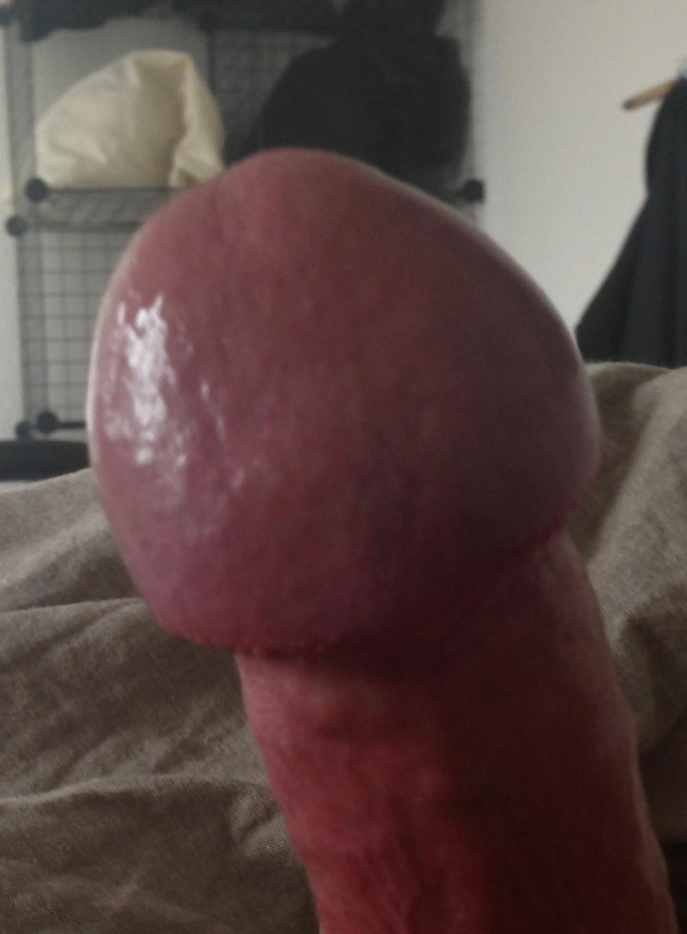 Dicke peniseichel