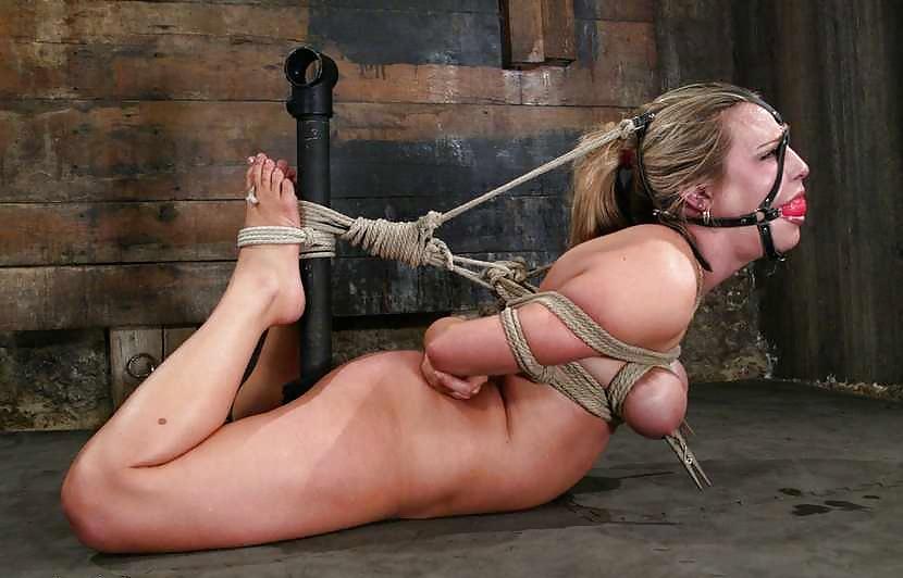 Harmony rose bondage rope