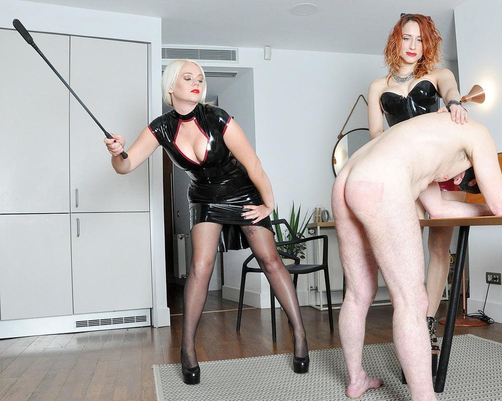 Mistress fang, family disciplinarian