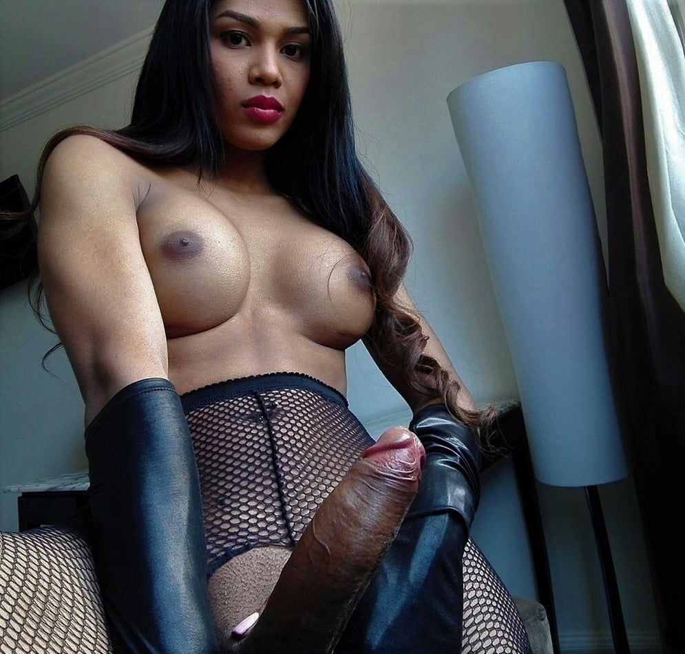 Shemale adult model escort ts candykisses