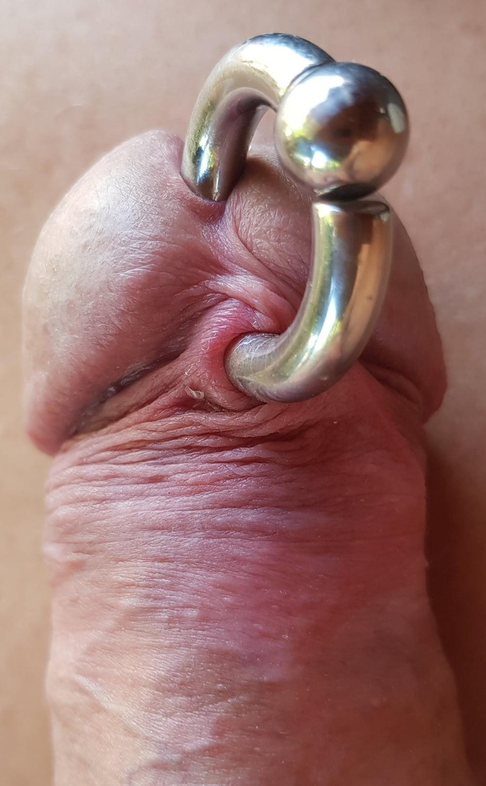 Piercing Penis