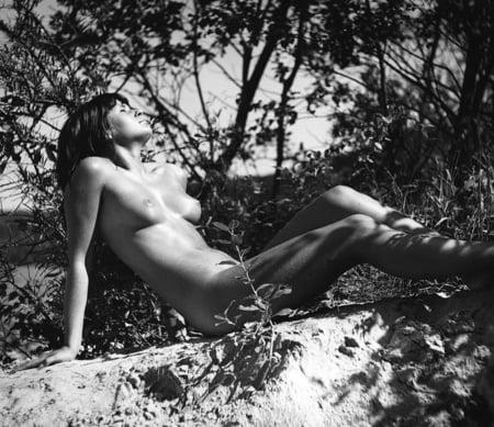 Erotik In Der Natur